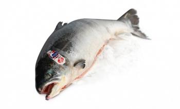 Скидка на тушку лосося