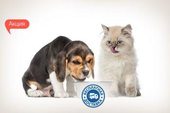При покупке кормов для кошек и собак на сумму от 300 грн, бесплатная доставка по всей Украине!