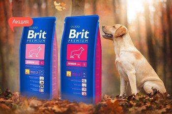 К корму для собак Brit Premium 15 кг. - упаковка 3 кг. в подарок!