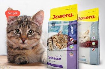 К акционному сухому корму для кошек Josera - сухой корм 400 гр. в подарок!