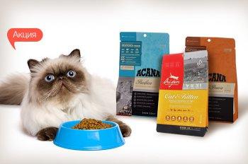 Акция! 1+1=3! Купи две упаковки корма для кошек Acana или Orijen 340 гр - получи третью упаковку в подарок!