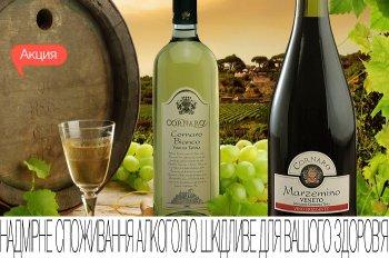 Скидка 25% на итальянские вина Montellian!